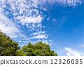 푸른, 하늘, 구름 12326685