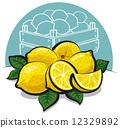 fresh lemons  12329892