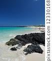 Beach on Hawaii Island 12330168