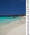 Beach on Hawaii Island 12330189