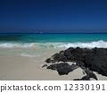 Beach on Hawaii Island 12330191