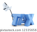"Business men jumping over ""tax"" sign. Business concept. Isolated. Contains clipping path 12335656"