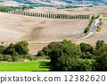 farm, agriculture, tuscany 12382620