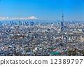 蓝天传播的富士山和东京天空树 12389797