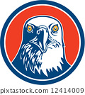 American Bald Eagle Head Circle Retro 12414009