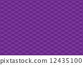 矢量 圖案 模式 12435100