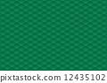 矢量 圖案 模式 12435102