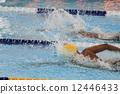 爬行 游泳 精美 12446433