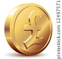 Pound coin 12497571