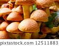 Close-up view Nameko mushrooms 12511883