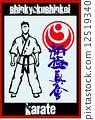 fight karate fighter 12519340