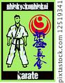 fight karate fighter 12519341