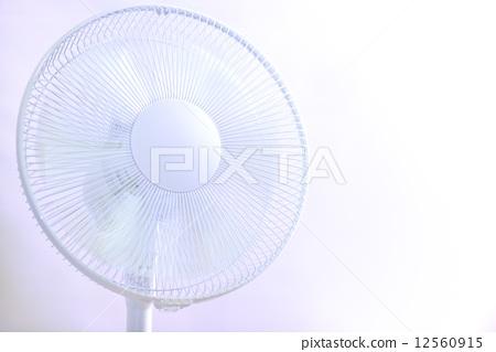 Fan 12560915