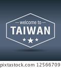 台灣 臺灣 六邊形的 12566709