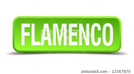 Flamenco green 3d realistic square isolated button 12567870
