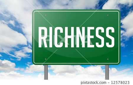 Richness on Green Highway Signpost. 12578023