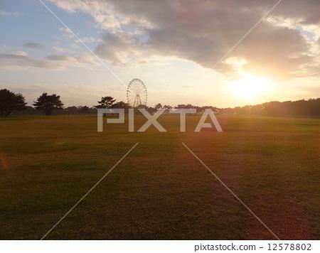 State-run Hitachihama Park 12578802