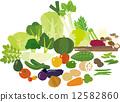 矢量 蔬菜 高麗菜 12582860
