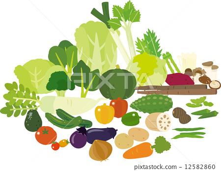 很多蔬菜 12582860