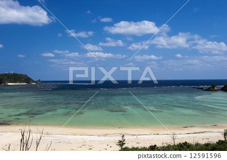 Coral reef coast 12591596