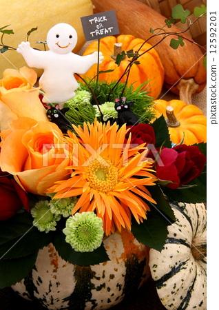 Halloween Pumpkin Flower Image Stock Photo 12592201 Pixta