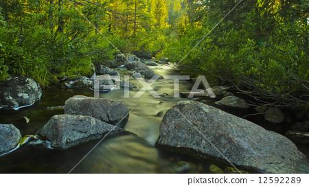 Mountain Stream 12592289