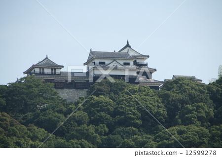 마쓰야마 성 12599278
