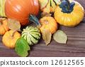 pumpkin, many, types 12612565