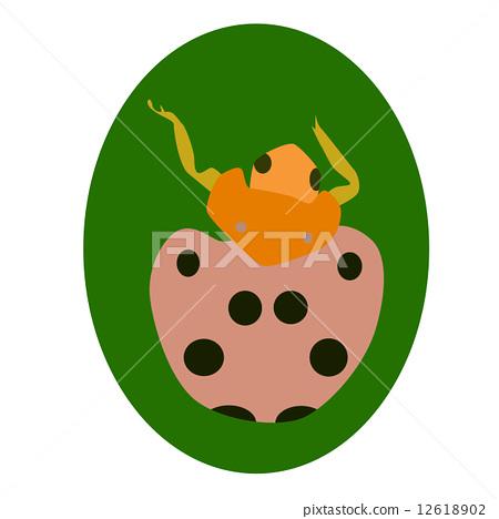 LadyBug on leaf 12618902