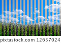 Vertical Montaged Photo in Color and Two Tone Background 12637024