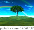 สายรุ้ง,ท้องฟ้า,ต้นไม้ 12649037