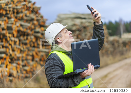 Forest employee near stacks of logs  12650389