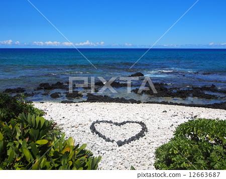 heart 12663687
