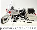 Model of a white-bai 12671331