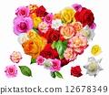 玫瑰的心 12678349