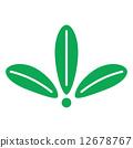 一種植物 12678767