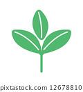 矢量 植物 植物學 12678810