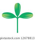 鴨兒芹屬 葉子 樹葉 12678813