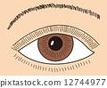 矢量 眼 眼睛 12744977