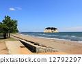 Koiwa Coast 12792297