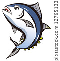 金枪鱼 矢量 鱼 12795133