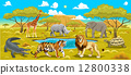 African landscape with animals. 12800338