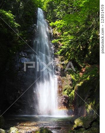 Hakuzaki Waterfall 12801459