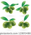 set of olives vector 12805486