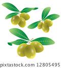 set of olives vector 12805495