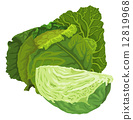 甘藍 包菜 椰菜 12819968