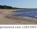 tourist, vallarta, vacation 12823905
