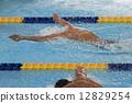 游泳比賽 游泳 游泳者 12829254