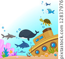 Underwater Animals 12837976