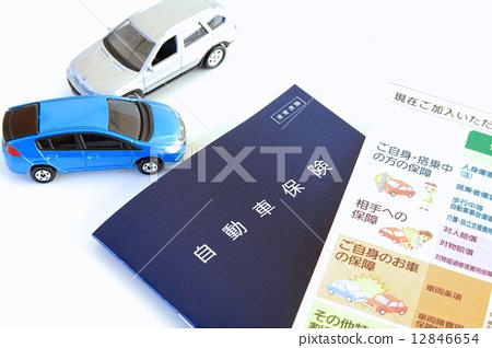 자동차 보험 12846654